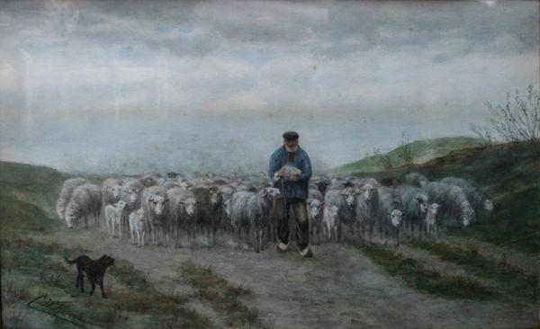 Herder en schaapskudde