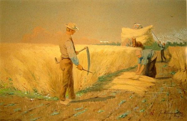 In oogsttijd