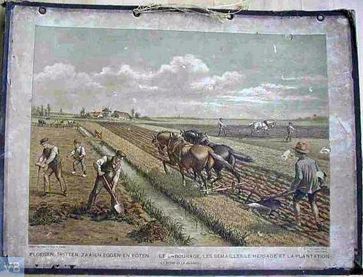 Ploegen, spitten, zaaien en oogsten