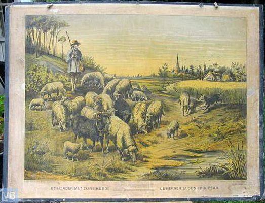 De herder en zijne kudde