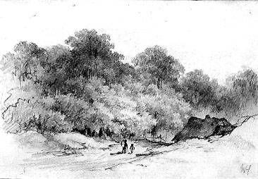 Hut bij bosrand